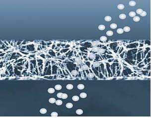 membrana3